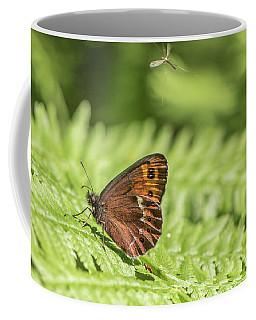 Scotch Argus - Erebia Aethiops Coffee Mug