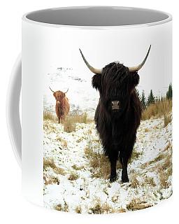 Coffee Mug featuring the photograph Scottish Black Highland Coo by Maria Gaellman