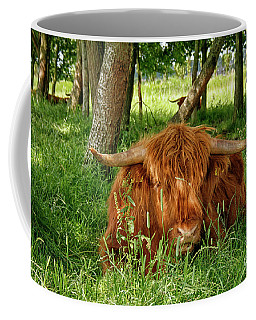 Coffee Mug featuring the photograph Scottish Higland Cow by Patricia Hofmeester