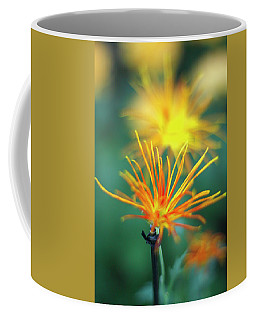 Scraggly Mum Coffee Mug