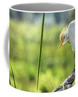 Scratching  Coffee Mug