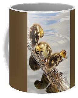 Scratching Frenzie Coffee Mug