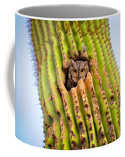 Screech Owl In Saguaro Coffee Mug