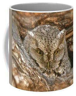 Screech Owl On Spring Creek Coffee Mug