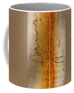 Coffee Mug featuring the photograph Scribbly Gum Bark by Werner Padarin
