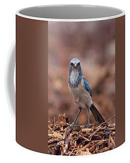Scrub Jay On Chop Coffee Mug