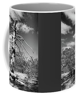 Coffee Mug featuring the photograph Sculpted By Time by Linda Lees