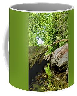 Sculptured Rocks Coffee Mug