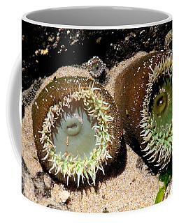 Sea Anemones Coffee Mug