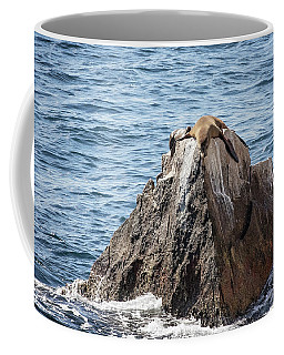 Sea Lion Rock Coffee Mug