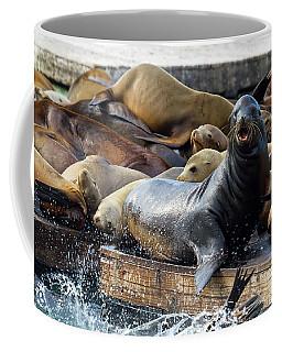 Sea Lions On The Floating Dock In San Francisco Coffee Mug
