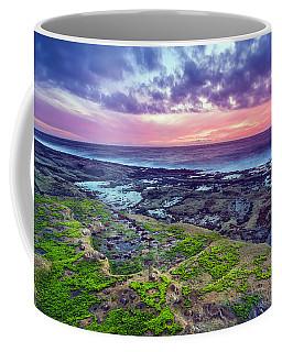 Sea Moss Sunset Coffee Mug