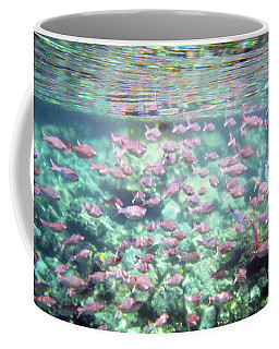 Coffee Mug featuring the photograph Sea Of Fish 2 by Karen Nicholson