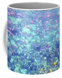Coffee Mug featuring the photograph Sea Of Fish by Karen Nicholson