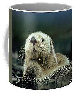 Sea Otter  Coffee Mug by Tim Fitzharris