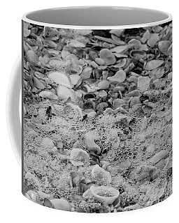 Sea Shells By The Seashore Coffee Mug