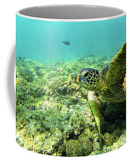 Coffee Mug featuring the photograph Sea Turtle #2 by Anthony Jones