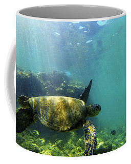 Coffee Mug featuring the photograph Sea Turtle #5 by Anthony Jones