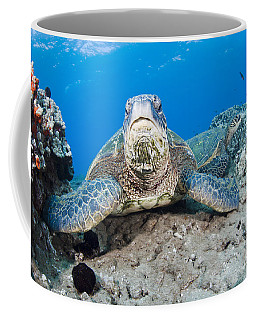 Sea Turtle On Reef Coffee Mug