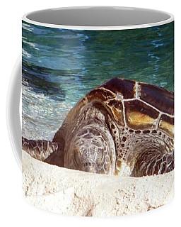 Coffee Mug featuring the photograph Sea Turtle Resting by Amanda Eberly-Kudamik