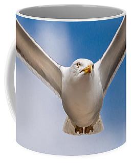 Seabird Closeup Coffee Mug