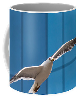 Seabird Flying On The Glass Building Background Coffee Mug