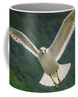 Seagull At The Fjord Coffee Mug