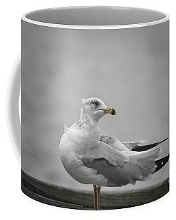 Seagull At The Marina Coffee Mug by Ella Kaye Dickey