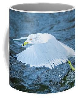 Seagull Departure Coffee Mug by Jeff at JSJ Photography