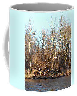 Coffee Mug featuring the photograph Seagull Flying by Melinda Blackman
