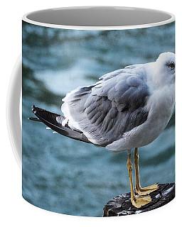 Seagull In Venice Coffee Mug by Tamara Sushko