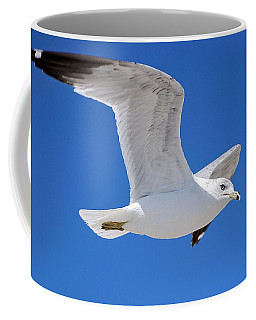 Seagull Coffee Mug by Ludwig Keck