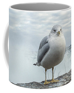 Seagull Model Coffee Mug