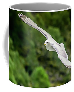 Seagull On The Fjord Coffee Mug