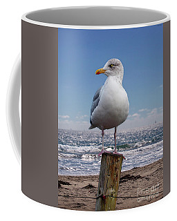 Seagull On The Shoreline Coffee Mug