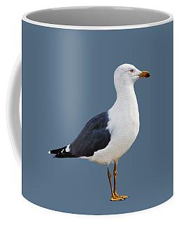 Seagull Portrait Coffee Mug