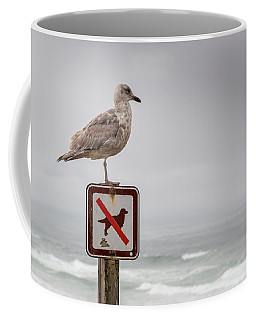 Seagull Standing On Sign And Looking At The Ocean Coffee Mug