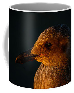 Coffee Mug featuring the photograph Seagull Sunrise by Tikvah's Hope