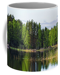 Seaguls Flying And Sun Was Shining Coffee Mug