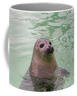 Seal In Water Coffee Mug