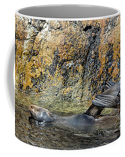 Seal On His Back Coffee Mug