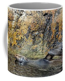 Seal On His Back Coffee Mug by Patricia Hofmeester