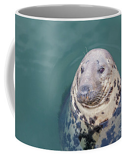 Seal With Long Whiskers With Head Sticking Out Of Water Coffee Mug