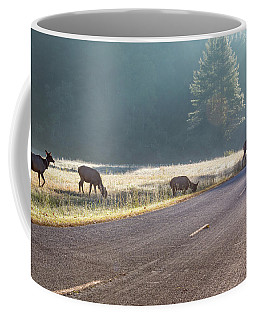 Searching For Greener Grass Coffee Mug
