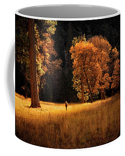 Searching For Light Coffee Mug
