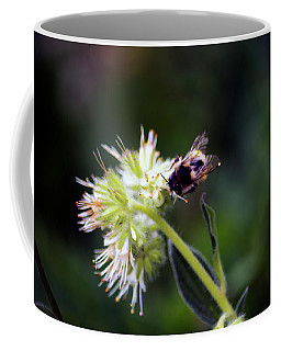Searching For Pollen Coffee Mug