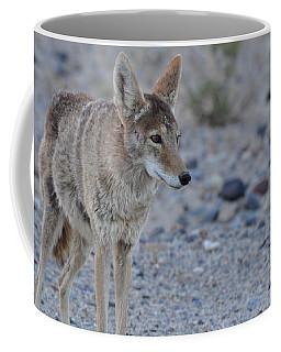 Searching Coffee Mug by Joe Burns
