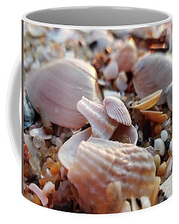 Seashells And Pebbles Coffee Mug