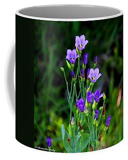 Seaside Gentian Wildflower  Coffee Mug