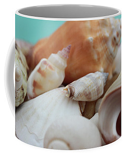 Seaside Seashells Coffee Mug